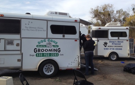 Mobil Grooming Services for Animals