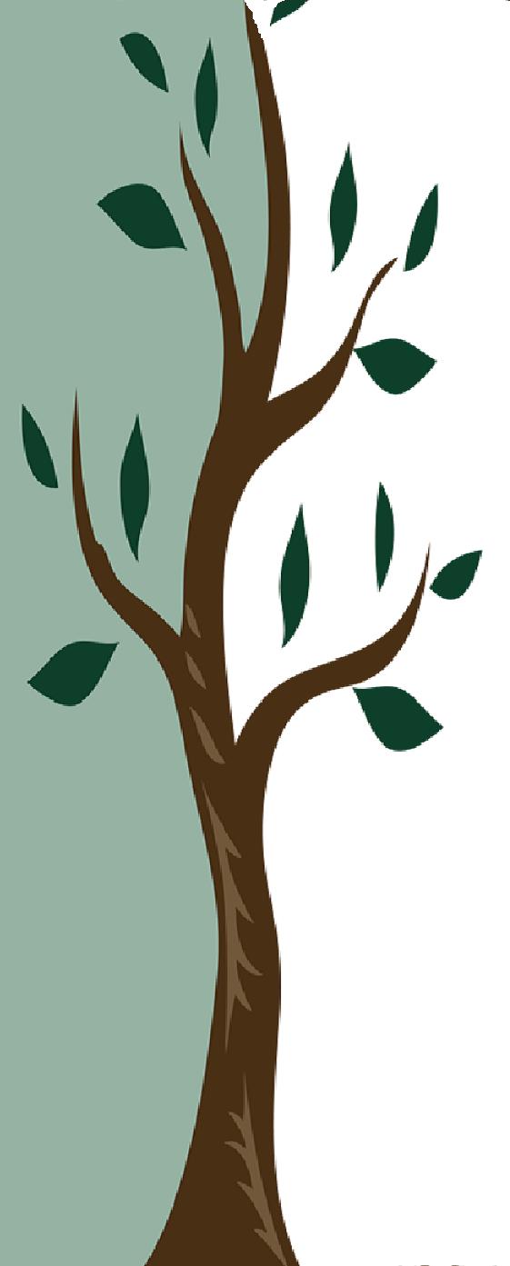 tree no border