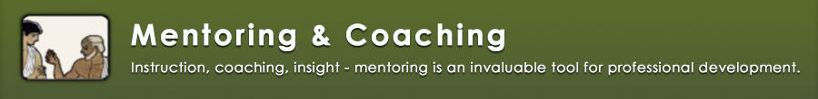 Mentoring and Coaching Link
