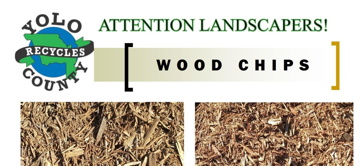 Wood Chips 10-15-18
